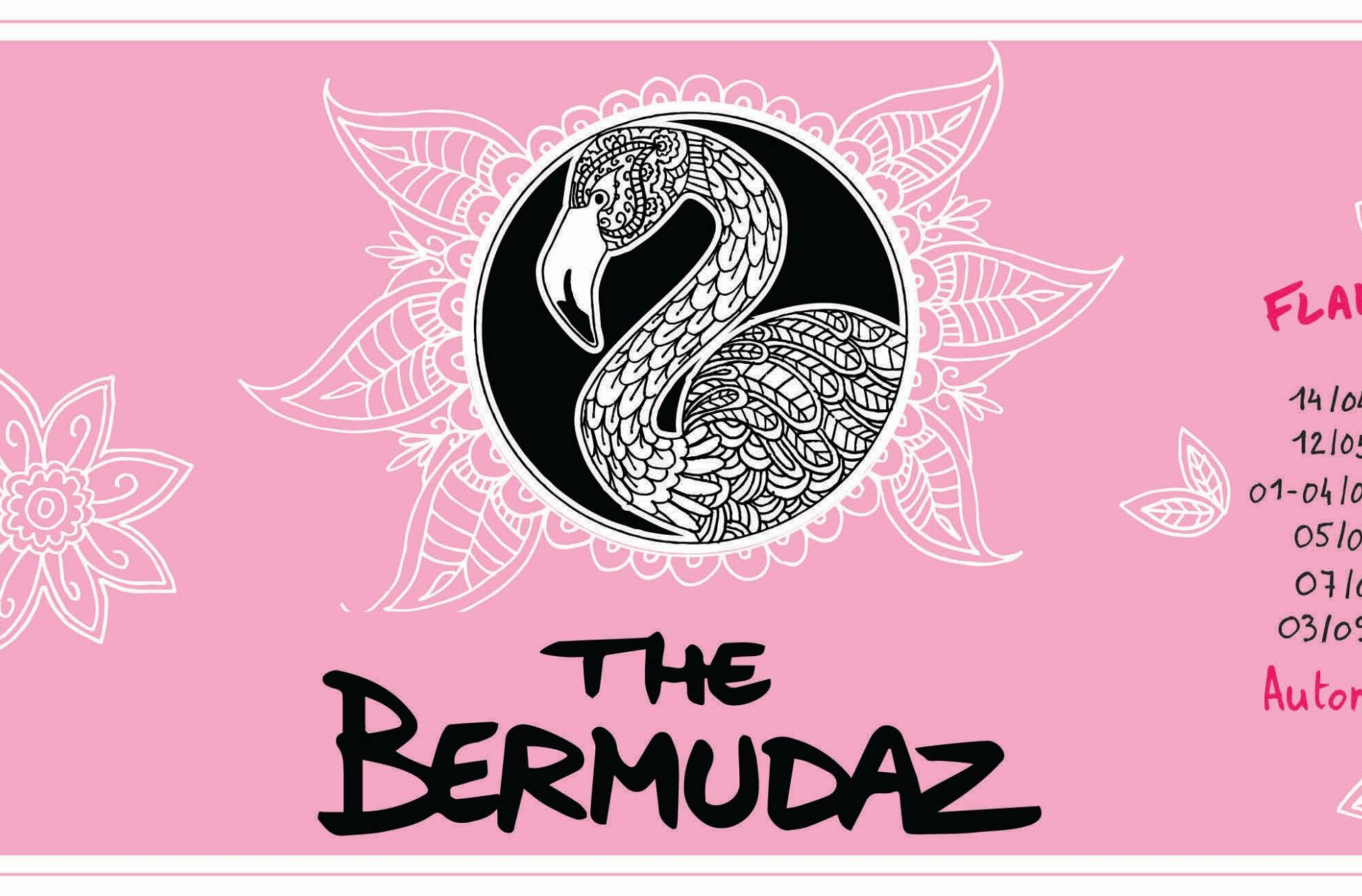 The Bermudaz en concert
